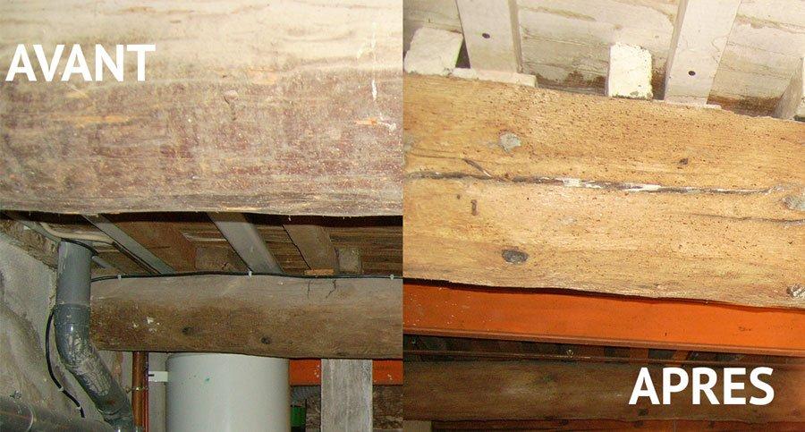 la catalane du traitement traitement de charpente traitement contre les termites et nettoyage. Black Bedroom Furniture Sets. Home Design Ideas